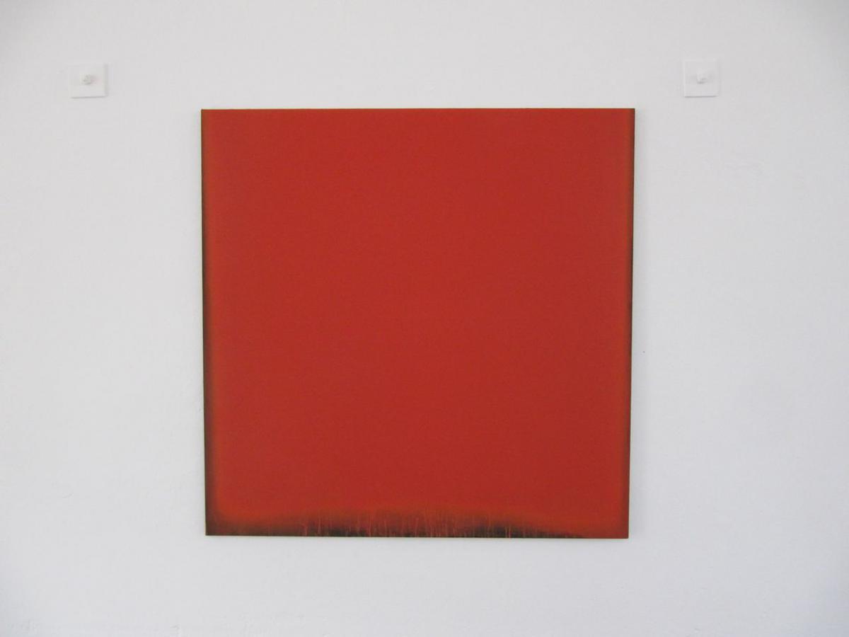 radical painting - rot – schwarz, 2010 / pigmente auf baumwolle
